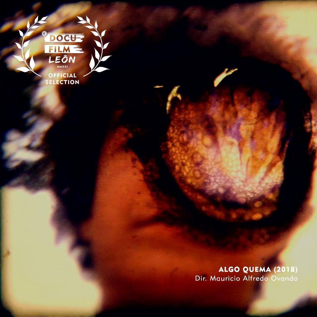 ALGO-QUEMA-DOCU-FILM-2021